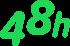Expressversand Icon
